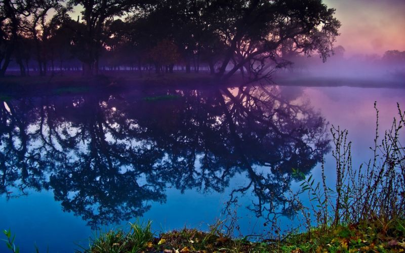 landscapes trees lakes reflections wallpaper