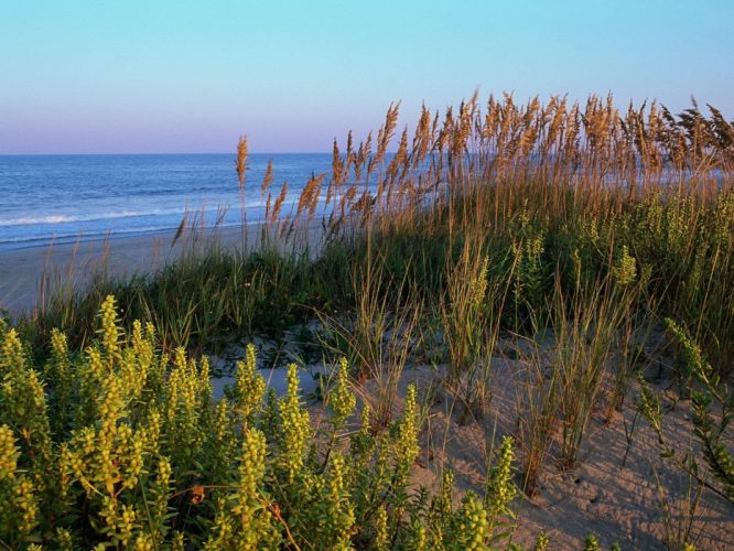 landscapes nature dunes beaches wallpaper