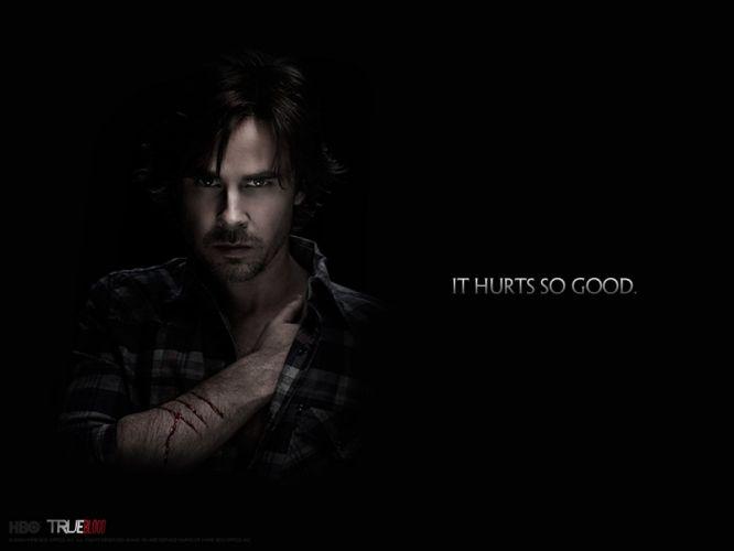 TRUE BLOOD drama fantasy mystery dark horror hbo television series vampire (64) wallpaper