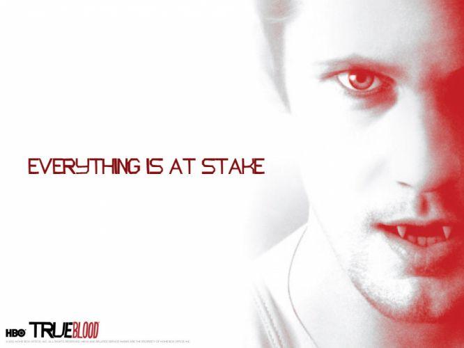 TRUE BLOOD drama fantasy mystery dark horror hbo television series vampire (39) wallpaper