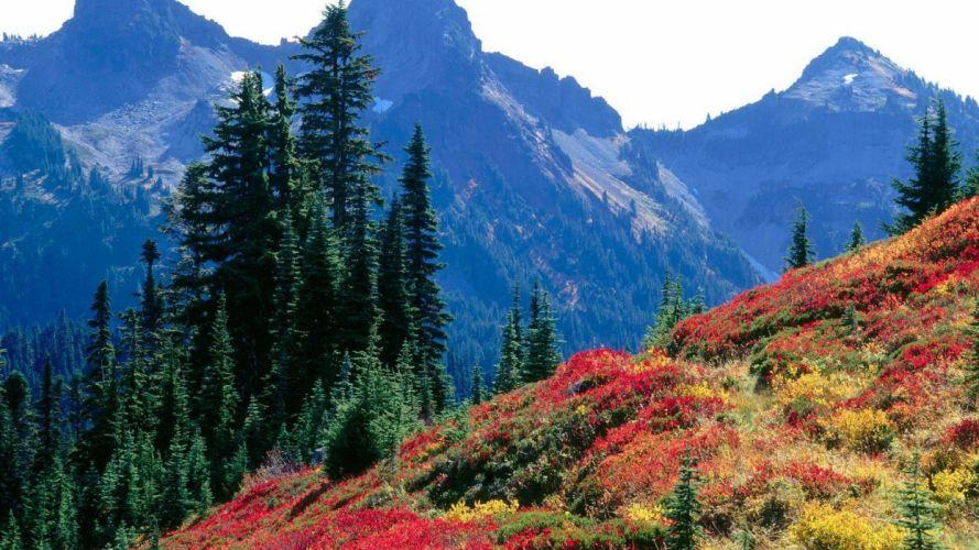 landscapes autumn spectrum range National Park Washington Mount Rainier wallpaper