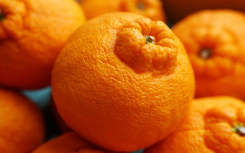 fruits oranges wallpaper