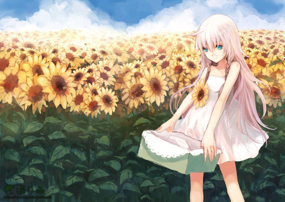 blue eyes braids clouds flowers ia long hair pink hair rudrawong summer dress sunflower vocaloid wallpaper