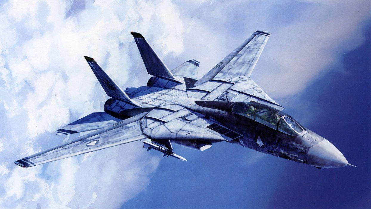 aircraft F-14 Tomcat wallpaper