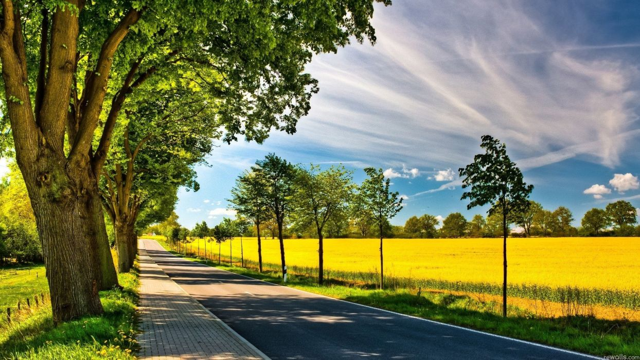 clouds landscapes nature trees fields roads wallpaper