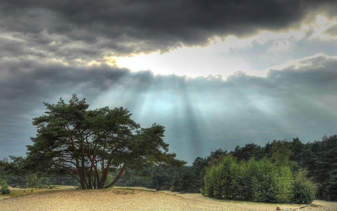 Veluwe netherlands sunrays stormclouds wallpaper
