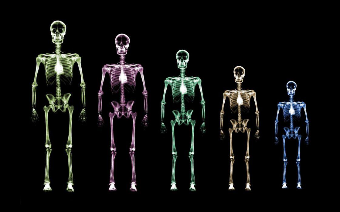 skeletons wallpaper