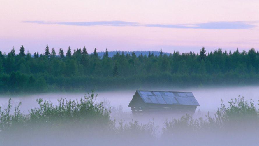 landscapes nature forests Sweden mist evening wallpaper
