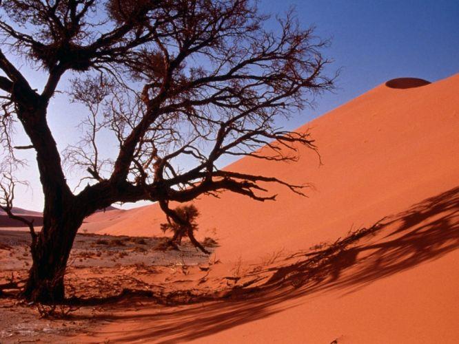 landscapes nature deserts sand dunes Africa wallpaper