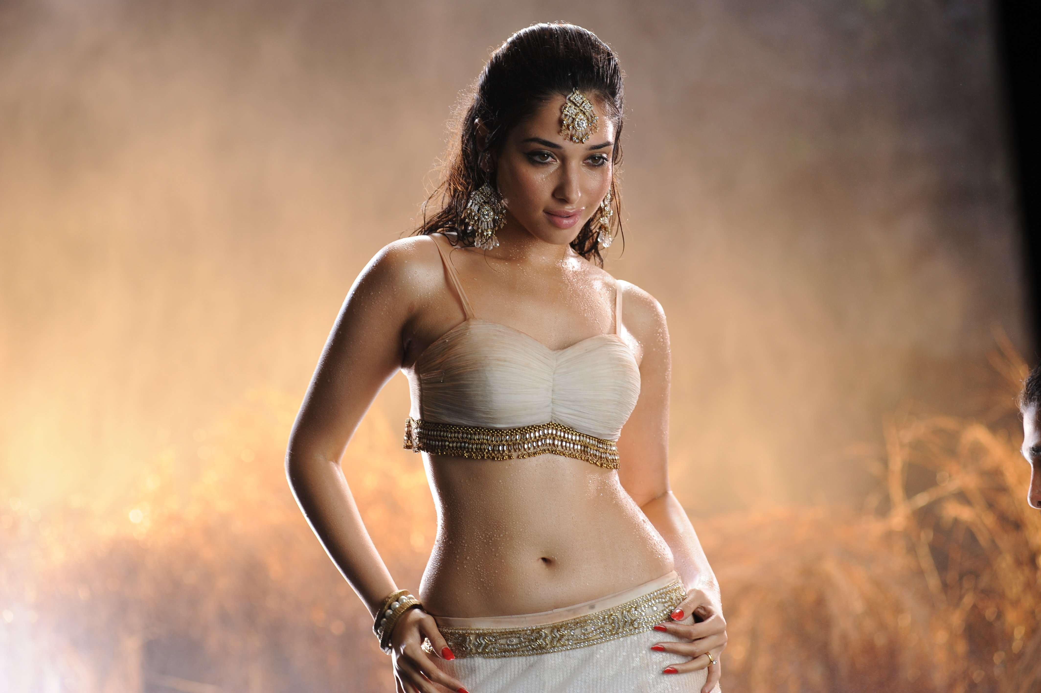 tamanna bhatia bollywood actress model babe (56) wallpaper