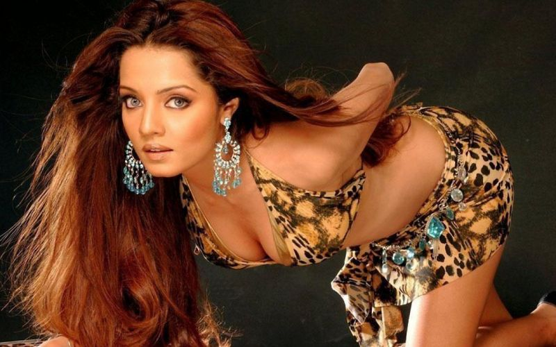 CELINA JAITLEY bollywood actress model babe (13) wallpaper