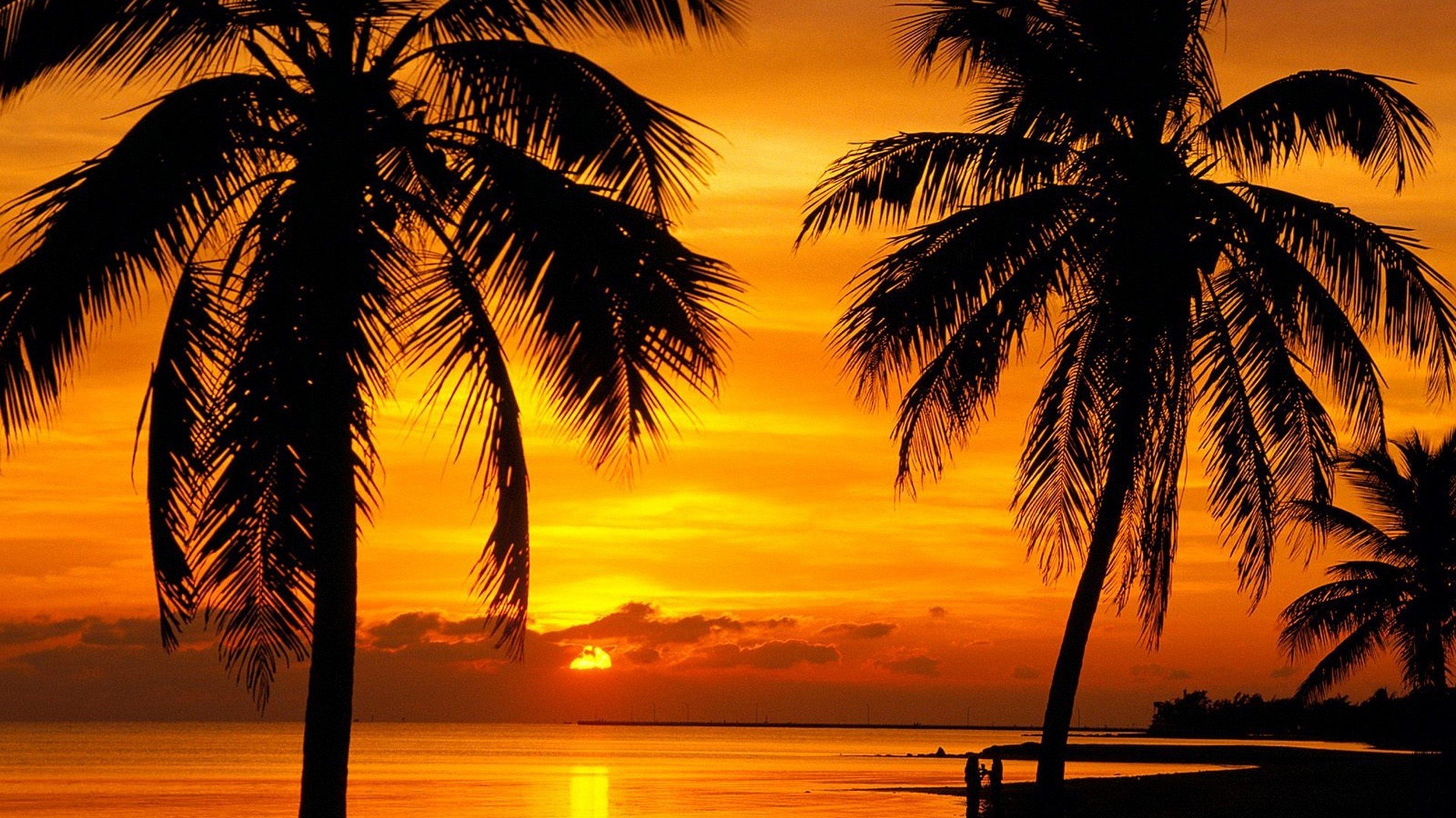 Florida Key Sunset Beach 4000x2250 Wallpaper