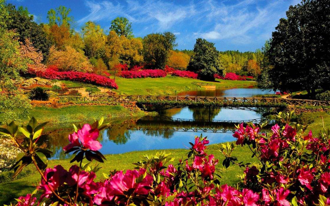 flower lake landscape 4000x2500 wallpaper