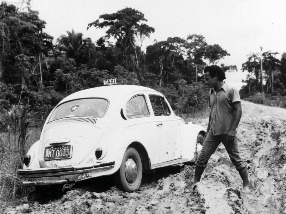volkswagem beetle car classic retro popular wallpaper