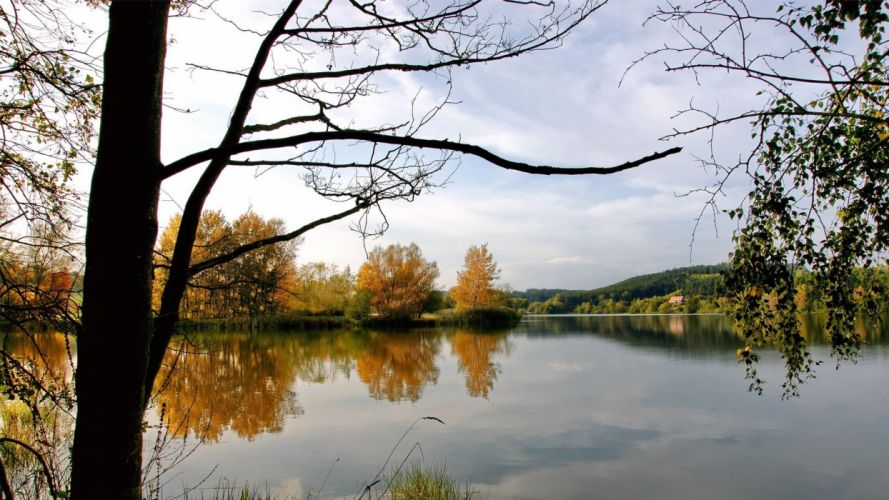 water landscapes trees lakes wallpaper