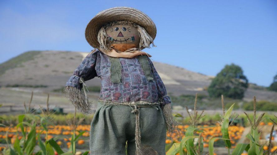 nature fields scarecrow farming wallpaper