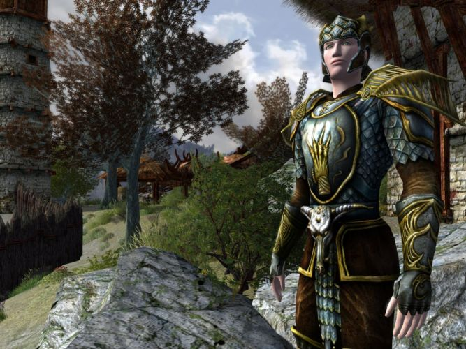Lord-of-the-Rings-Online lotr mmo game fantasy action adventure lord rings online (12) wallpaper