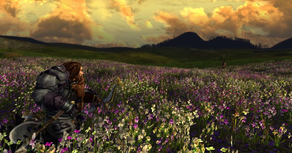 Lord-of-the-Rings-Online lotr mmo game fantasy action adventure lord rings online (42) wallpaper