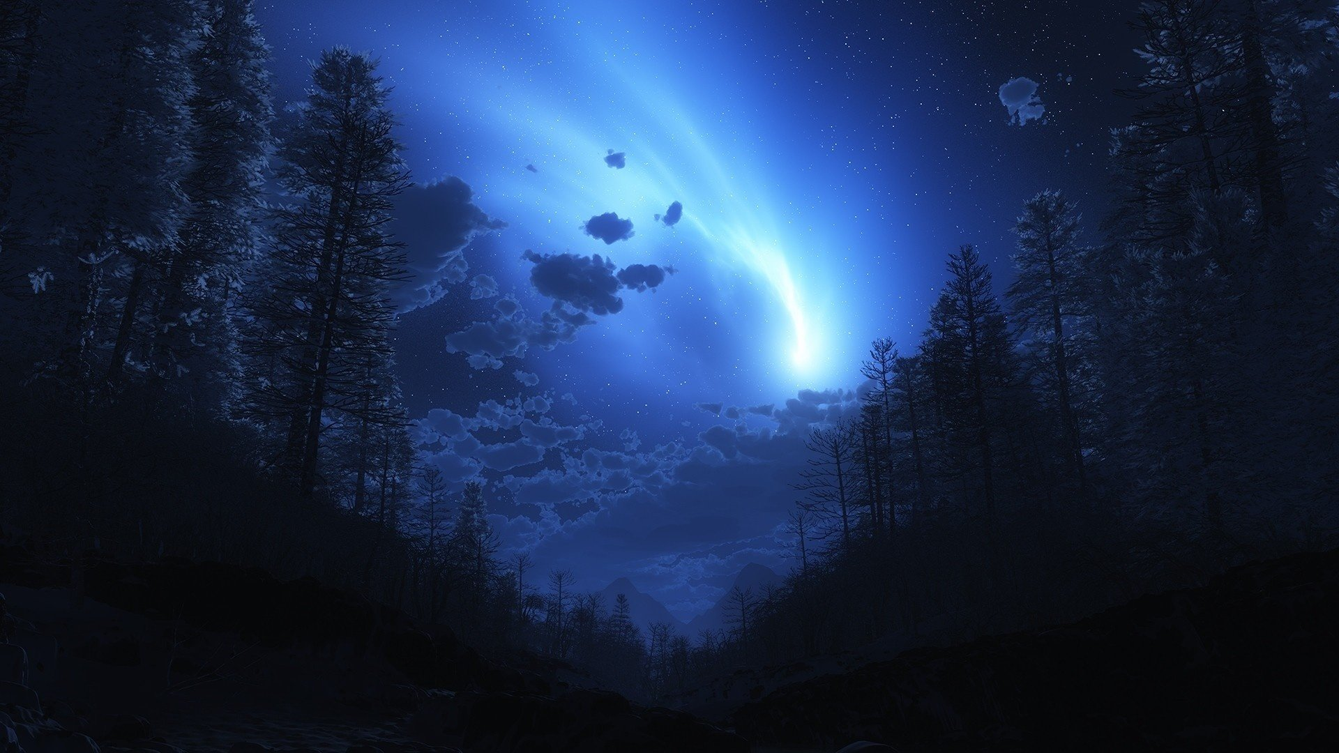 Night forest fog sky w...