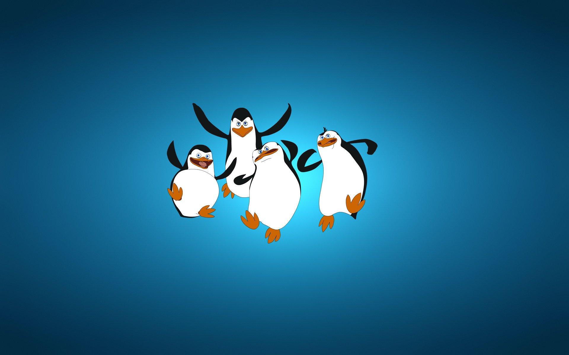 penguins of madagascar penguin wallpaper | 1920x1200 | 348228