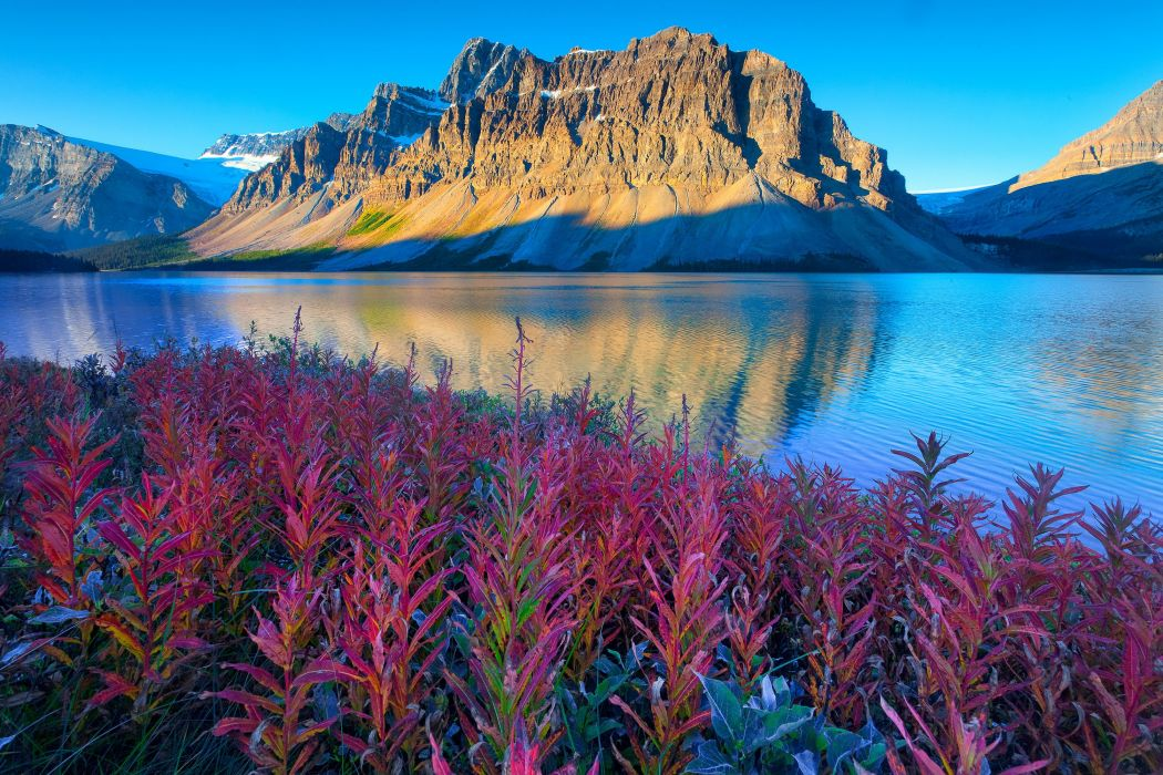 Canada Lake Parks Mountains Scenery Banff Bow Nature wallpaper