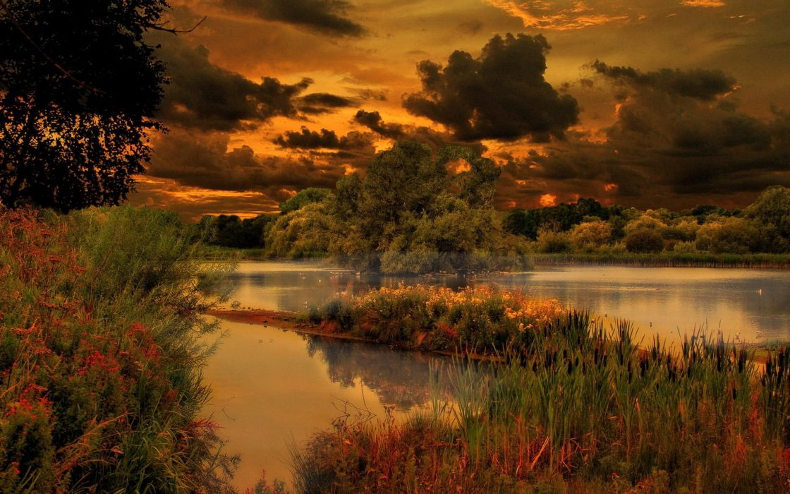 pond clouds trees nature evening lake wallpaper