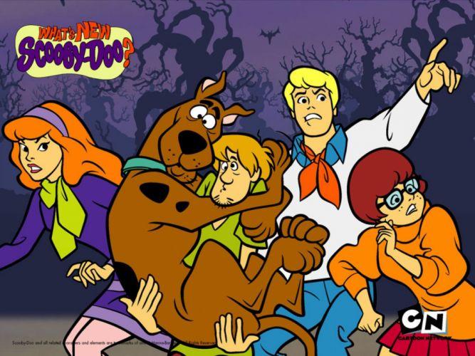 SCOOBY DOO adventure comedy family cartoon (66) wallpaper