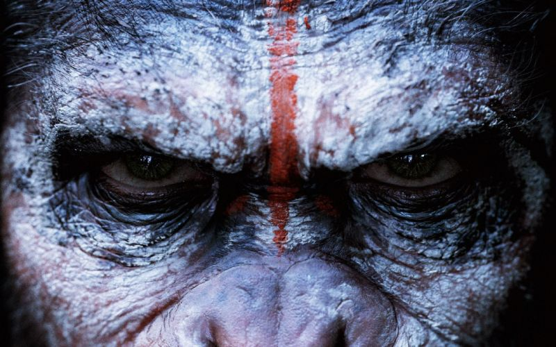 DAWN-OF-THE-APES action drama sci-Fi dawn planet apes monkey adventure (1) wallpaper