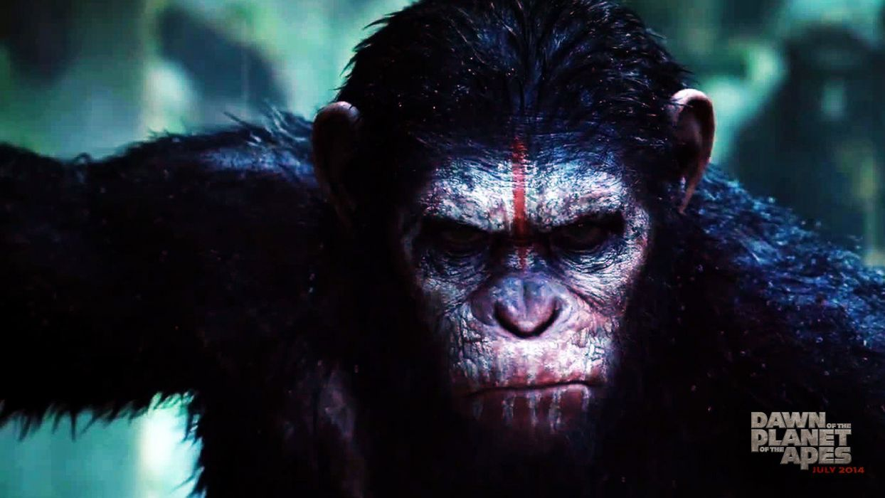 DAWN-OF-THE-APES action drama sci-Fi dawn planet apes monkey adventure (21) wallpaper