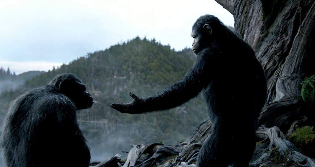 DAWN-OF-THE-APES action drama sci-Fi dawn planet apes monkey adventure (19) wallpaper