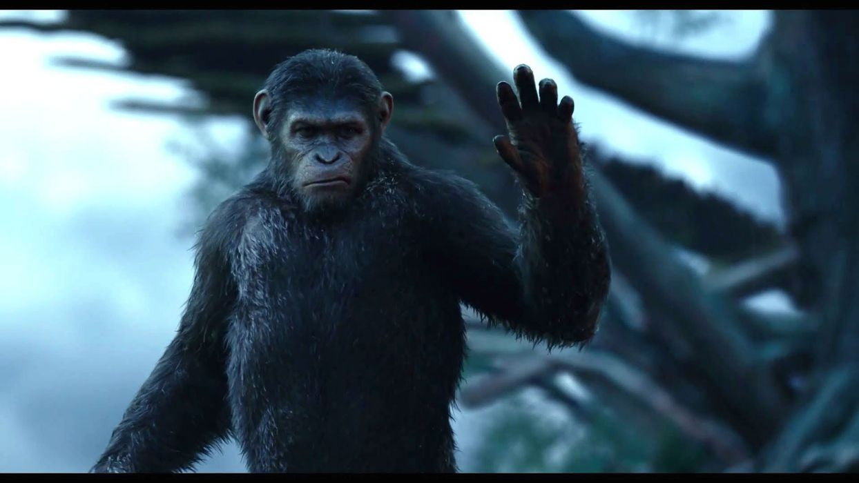 DAWN-OF-THE-APES action drama sci-Fi dawn planet apes monkey adventure (36) wallpaper