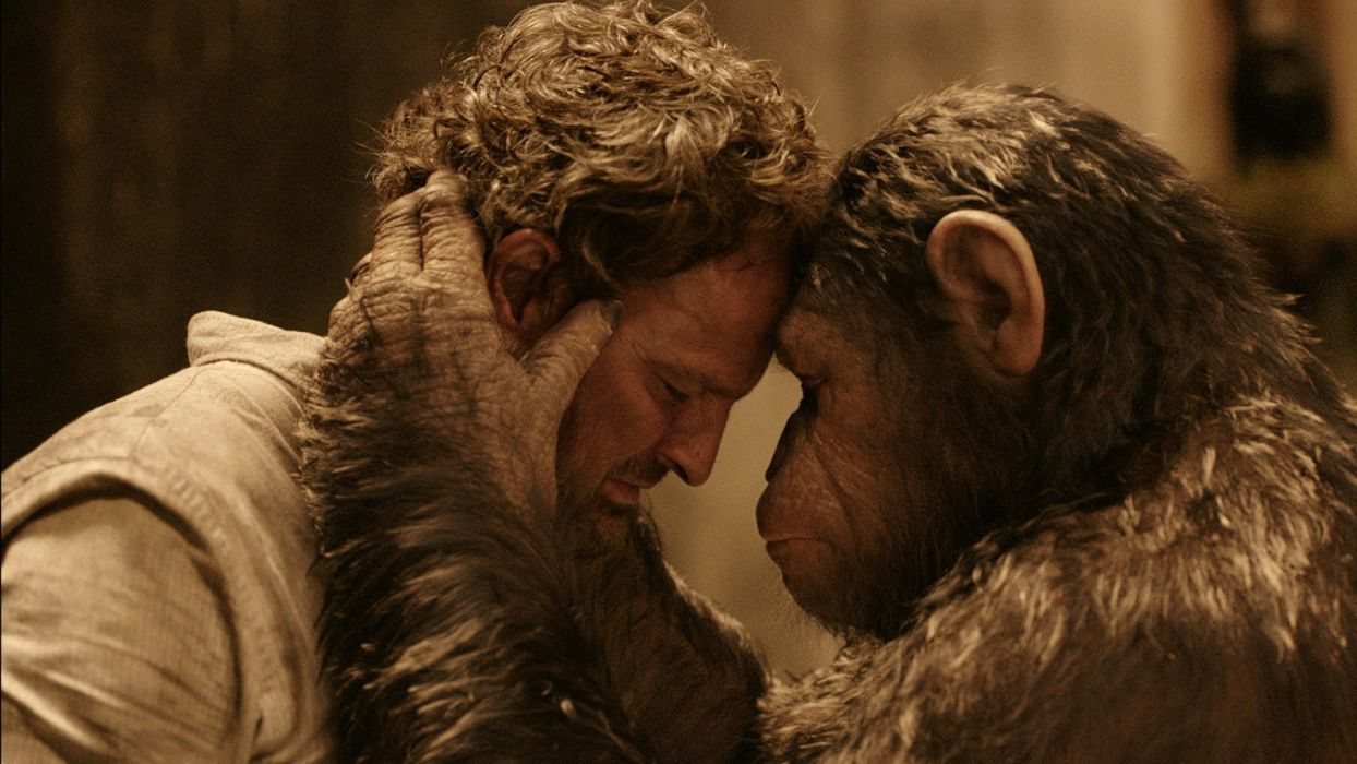 DAWN-OF-THE-APES action drama sci-Fi dawn planet apes monkey adventure (33) wallpaper