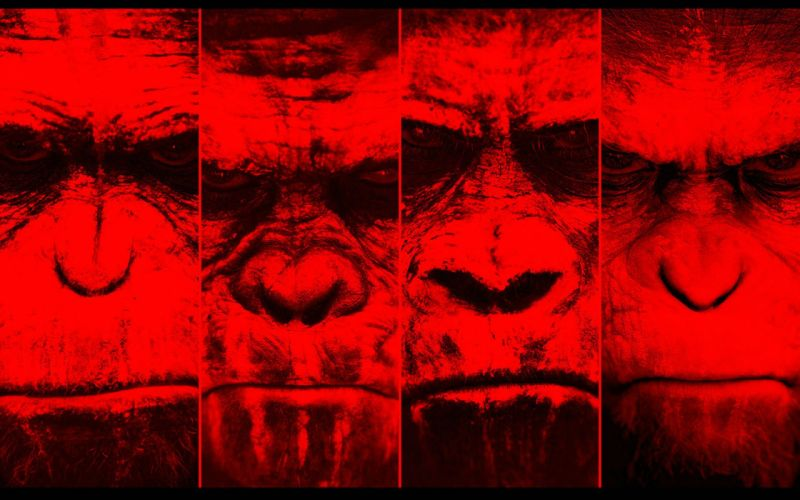 DAWN-OF-THE-APES action drama sci-Fi dawn planet apes monkey adventure (56) wallpaper
