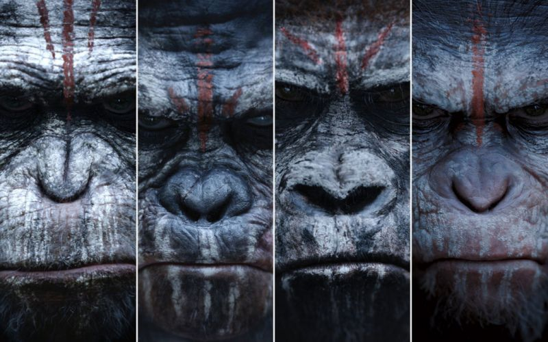 DAWN-OF-THE-APES action drama sci-Fi dawn planet apes monkey adventure (81) wallpaper