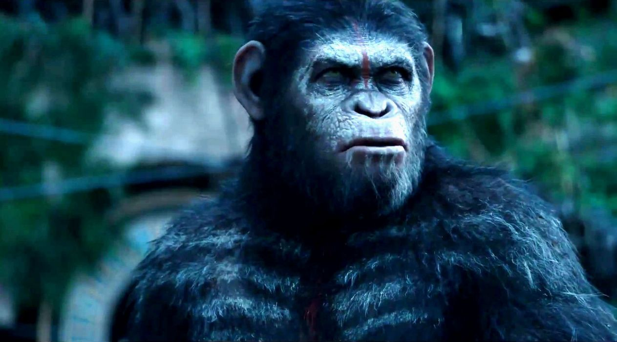 DAWN-OF-THE-APES action drama sci-Fi dawn planet apes monkey adventure (76) wallpaper