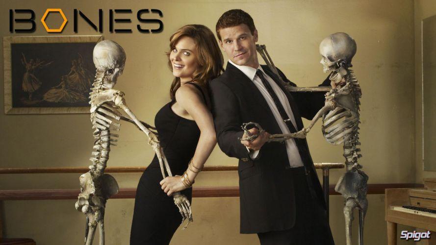 BONES comedy crime drama series (2) wallpaper