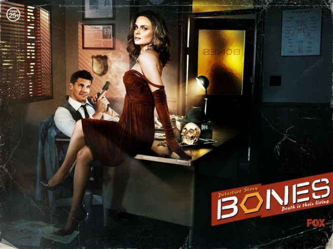 BONES comedy crime drama series (6) wallpaper