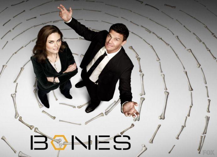 BONES comedy crime drama series (47) wallpaper
