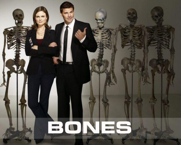 BONES comedy crime drama series (45) wallpaper