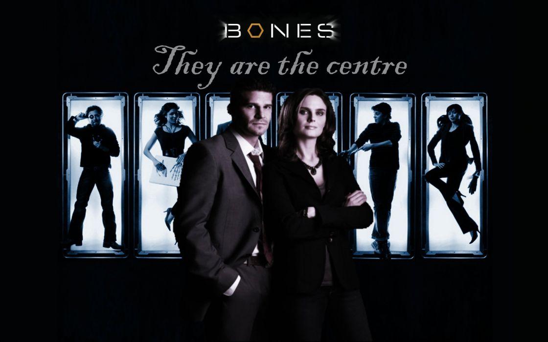 BONES comedy crime drama series (39) wallpaper