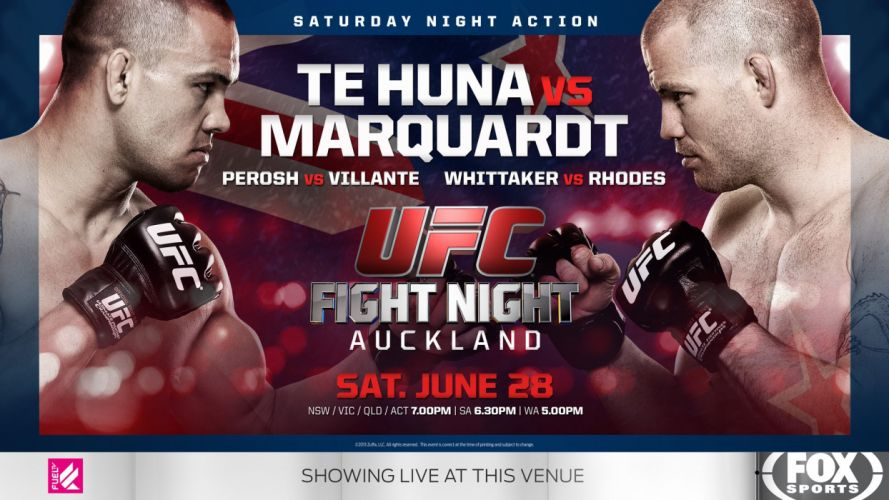 UFC mma martial fighting poster (12) wallpaper