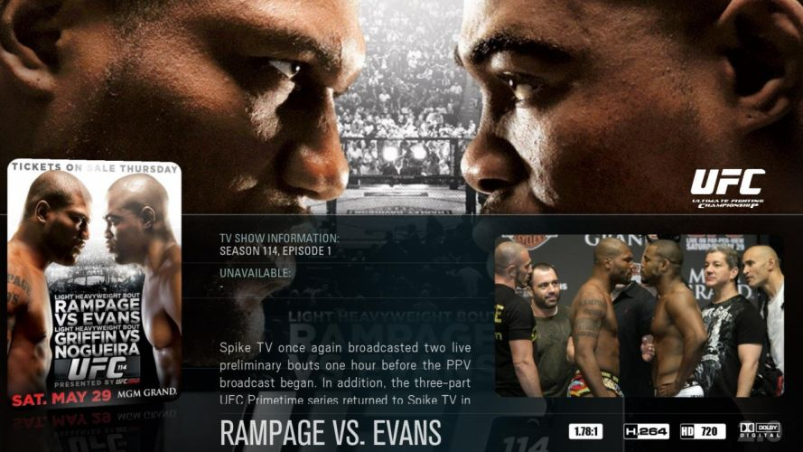 UFC mma martial fighting poster (6) wallpaper