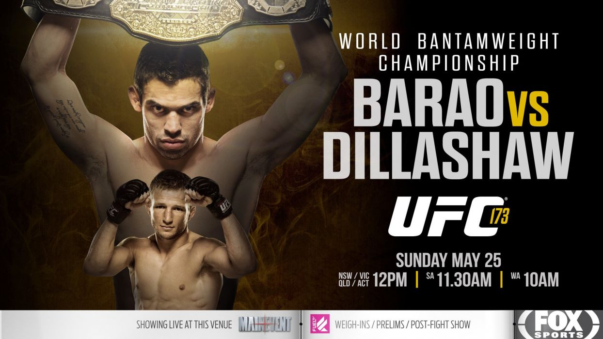 UFC mma martial fighting poster (2) wallpaper