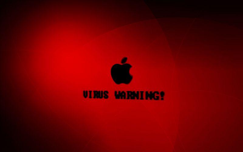 computer virus danger hacking hacker internet sadic (44) wallpaper