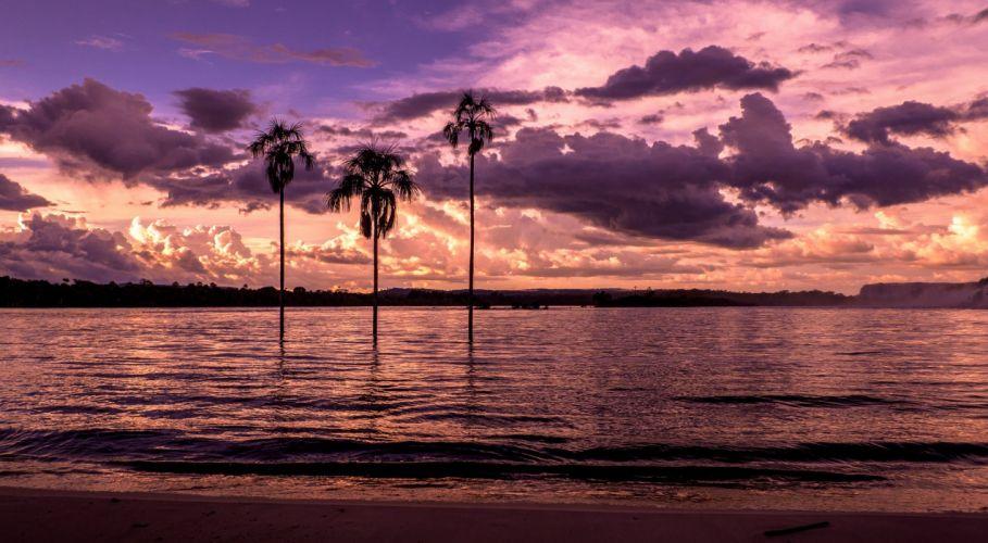 Bay Beach Sunset Palm Trees Wallpaper