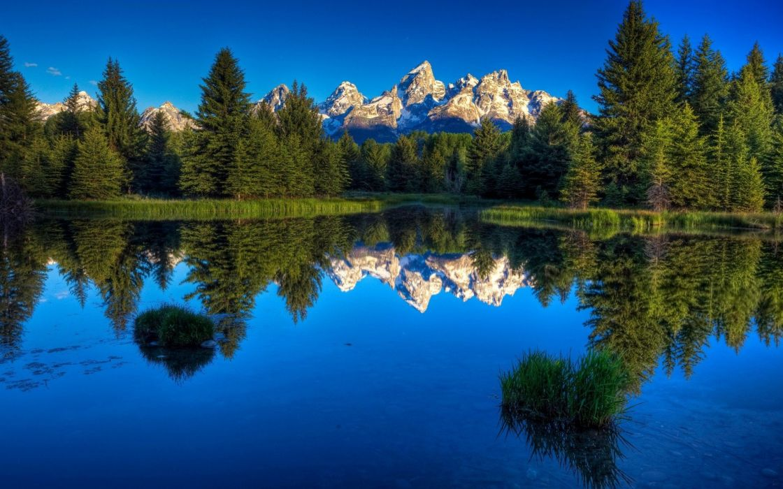 Forest lake mountains wallpaper
