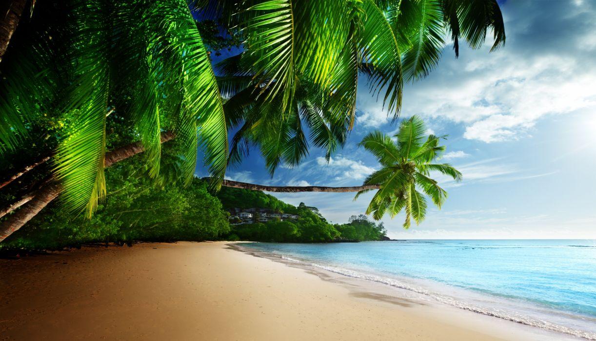 coast paradise tropical sea sky sunshine emerald blue beach wallpaper