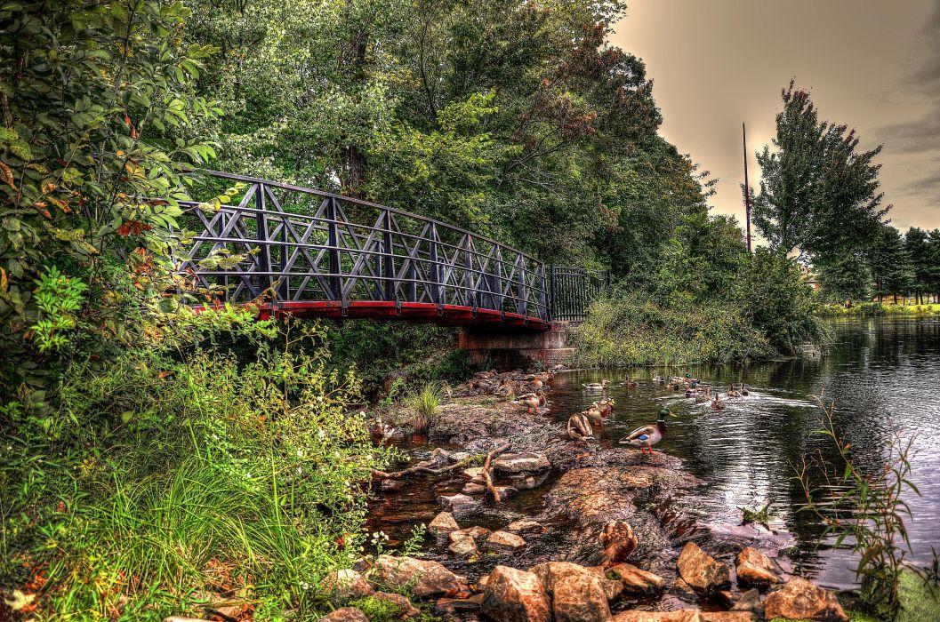 lake bridge rocks trees ducks landscape wallpaper