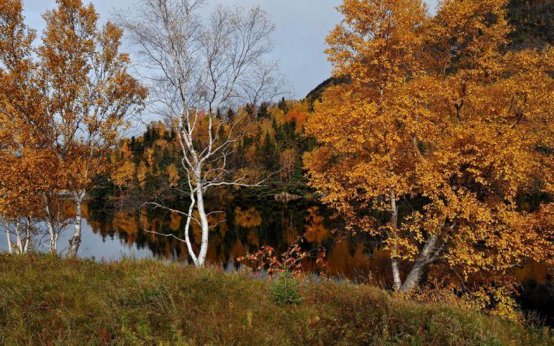 autumn nature river wallpaper