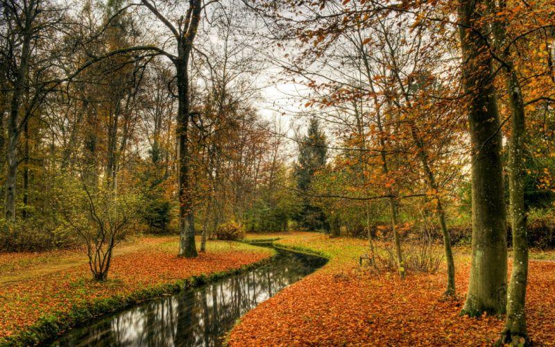 autumn river forest wallpaper